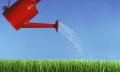 RebeccaLewis_Nov2013_watering-growth