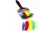AkankashaD_Nov2013_Paintbrush_Diversity