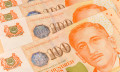 RebeccaLewis_April2014_money-Singapore-cash-wage-salary-shutterstock