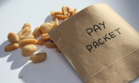 RebeccaLewis_May2013_pay-packet-peanuts-salary-money