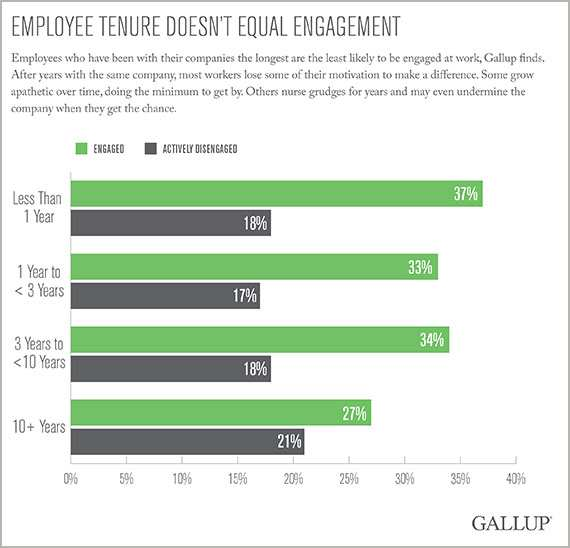 Gallup employee tenure infograhpic
