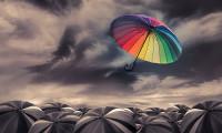 How creativity makes feel dishonest (sense of entitlement)