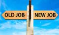 old job new job