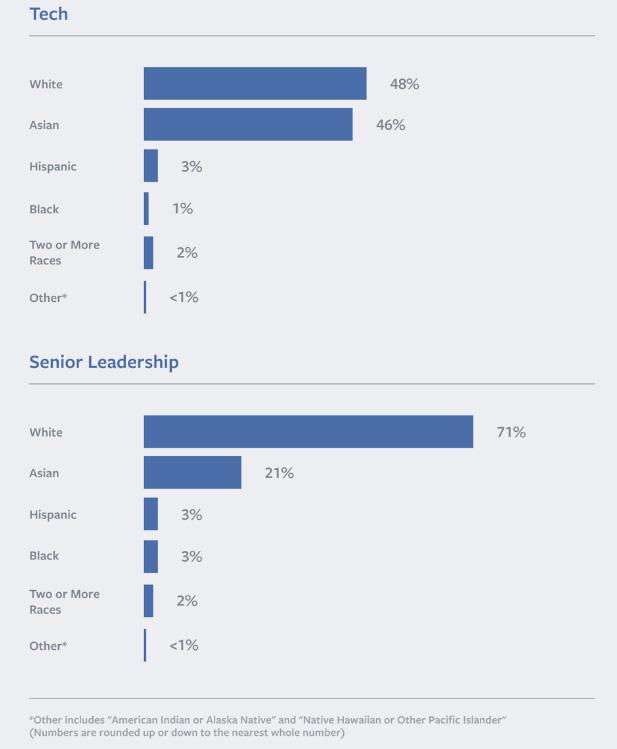 Facebook US Ethnicity 2