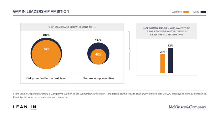 Women in the Workplace Ambition Gap chart, hr