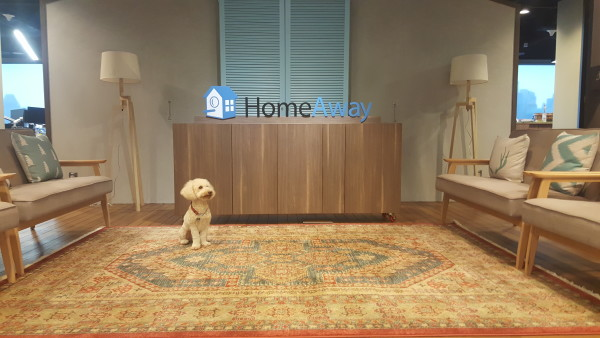 Nacho (one of HomeAway's employee's pets) sitting by the reception