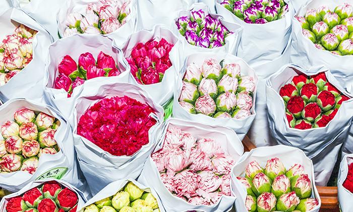 Flowers, Valentine's Day, hr