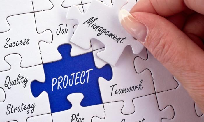 17982081 - project management
