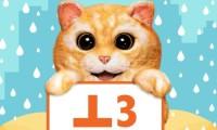 Anthony-Aug 28-Manning cat-123rf