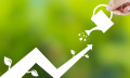 August 25-Anthony-growth-istock
